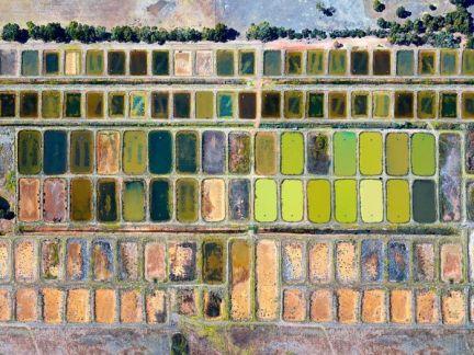 Marron Farm in Caple, M1007Ph • Christian Fletcher Photo Images