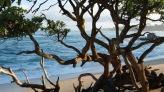 Baldwin Beach #3